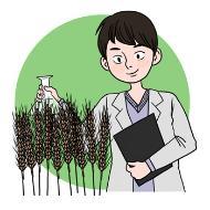 농업기술자의 설명을 돕기 위한 일러스트